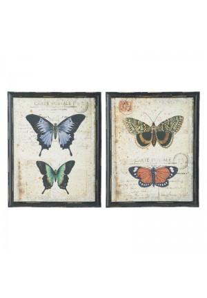 Quadri con farfalle set due pezzi
